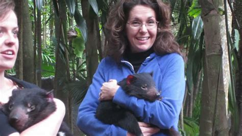 Tasmanian Devils Cuddle And Play With Visitors At The