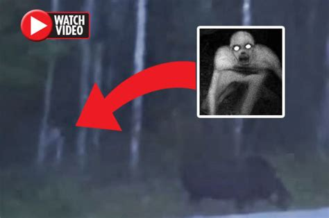 'Human-like creature' in Canadian woods sparks panic: 'Is