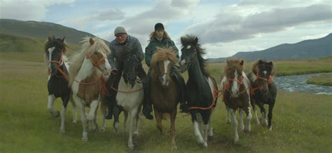 OF HORSES AND MEN | Tromsø International Film Festival