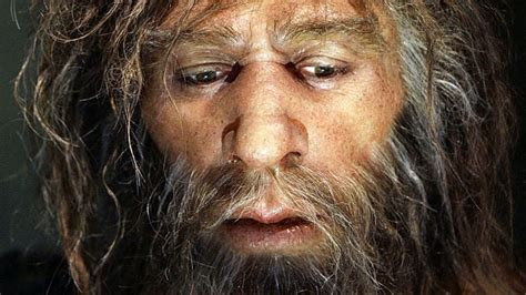 How Neanderthal are you? Check your hair and skin